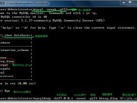 Mysql数据库的备份与还原