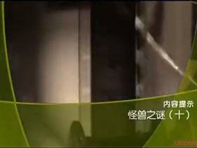 《大真探》 20131115 怪兽之谜10(十)