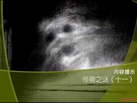 cctv《大真探》 20131116 怪兽之谜11(十一)
