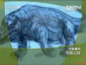 cctv《大真探》 20130518 怪兽之谜(一)