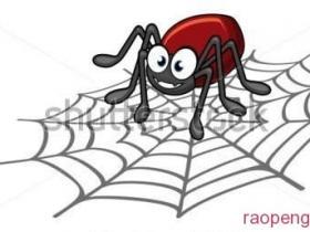 搜索引擎蜘蛛是怎样抓取网页的,如何吸引更多蜘蛛!
